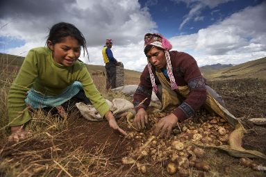 Family Farmers Hold Keys to Agriculture in a Warming World