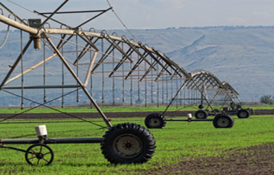 French corn farmers turn to drip irrigation