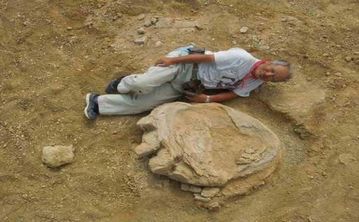 Giant dinosaur footprint found in Mongolia desert