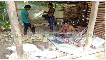 ক্রিকেট ব্যাটের গ্রাম : রূপসার নেহালপুর