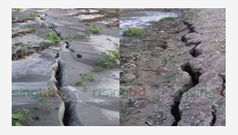 Earthquake: Proper preparation needed to avoid disaster