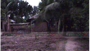 Operation 'South Paw' begins in Jhenidah