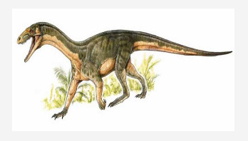 Early dinosaur relative walked like a croc