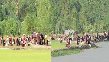 Stop oppression on Rohingya people