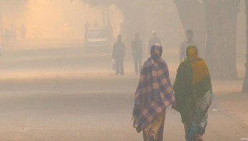 Air pollution affects birth weight, study finds