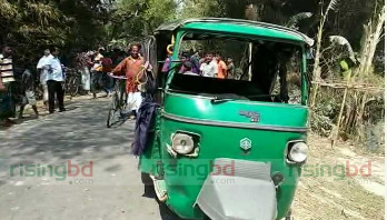 Two of a family killed in Thakurgaon road crash