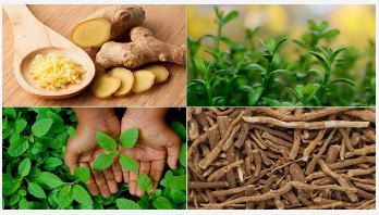 7 Ayurvedic superfoods you should eat every day