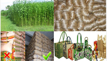 Restoring good days of jute is possible