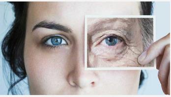 Anti-aging diet: 13 foods that fight wrinkles