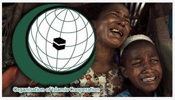 রোহিঙ্গা ইস্যুতে ওআইসি বৈঠকে মনোভাব জানাবে বাংলাদেশ