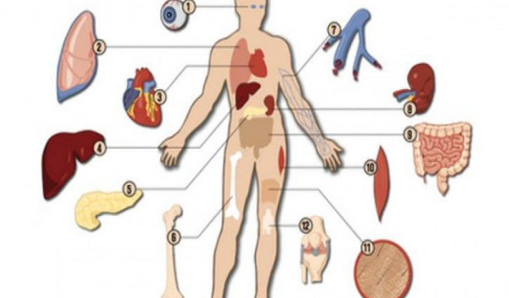 Transplantation of Human Organs Act: Implementation needed