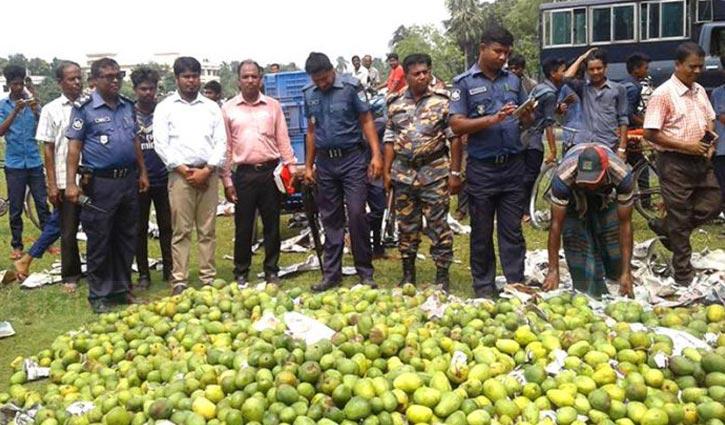 60 maunds of formalin treated mango destroyed in Kushtia
