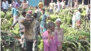 কলা বেচা-কেনার হাট 'পিরিজপুর'