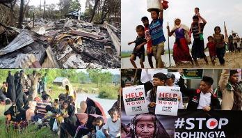 UN should play effective role
