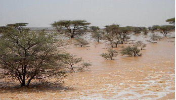 Over 50 killed in Somaliland cyclone