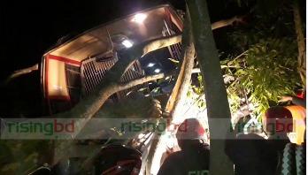12 dead as bus smashes three-wheeler in Gopalganj