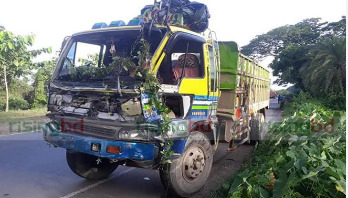 6 killed in truck-microbus collision in Feni