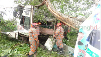 Road crashes in 9 dists leave 35 dead