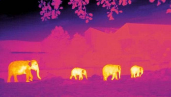 Conservationists use astronomy software to save species