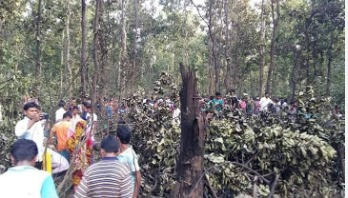 Pilot killed as training aircraft crashes in Tangail