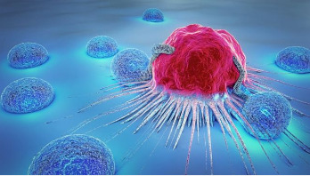 Glowing chemical could aid brain cancer surgery