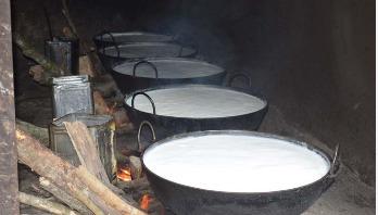 দুধ-মিষ্টির গ্রাম 'গৈলা'