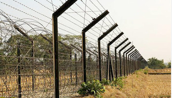 Bangladeshi shot dead by BSF along Thakurgaon border