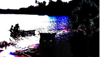 ভৌতিক গল্প    পানির উপর বিড়াল হাঁটছে