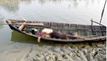 3 including Rohingya woman killed in Teknaf 'gunfights'