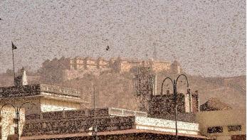 ভারতে পঙ্গপাল মারতে ১ হাজার জলকামান