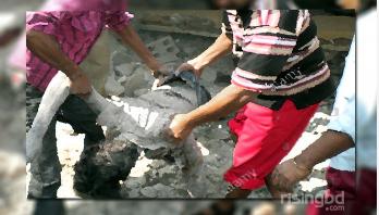 চরফ্যাশনে নৌকাডুবিতে দুজনের মৃত্যু