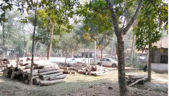 ঝুঁকিপূর্ণ ভবনে চলছে বন বিভাগের কার্যক্রম
