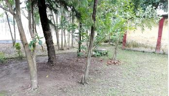 প্রস্তুত হচ্ছে এন্ড্রু কিশোরের সমাধির স্থান