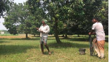 ভেজাল কীটনাশকে সয়লাব চাঁপাইনবাবগঞ্জ